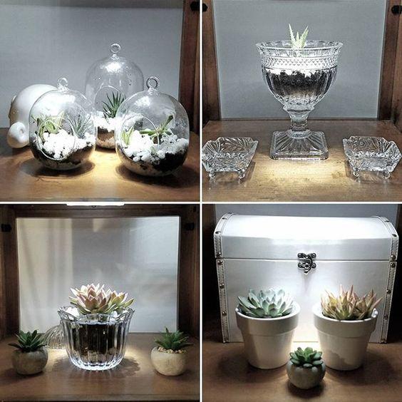 Details of my indoor vertical garden... Detalhes do meu jardim vertical... #interiordesign #indoorverticalgarden #indoorplants #decoração #jardiminterno #jardim #suculentslover