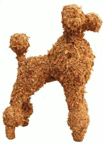 """Poodle Topiary Filled with Sphagnum Moss - 21"""" High by Topiary Art Works. $60.00. Filled with freshly harvested sphagnum moss.. 21"""" high - 16"""" long and 8"""" wide.. Topiary Poodle. Rigid steel frame.. Ready to plant with any type of plants.. The most real topiary poodle form made by the oldest topiary studio in USA. Hand formed and welded rigid steel frame. Hand filled with sphagnum moss and formed. Most often copied by others design.. Save 67% Off!"""