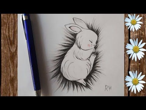 كيف ترسم أرنب نائم طريقة رسم أرنب بسهولة أرسم الأرنب اللطيف How To Draw A Rabbit Sleeping Drawing Youtube
