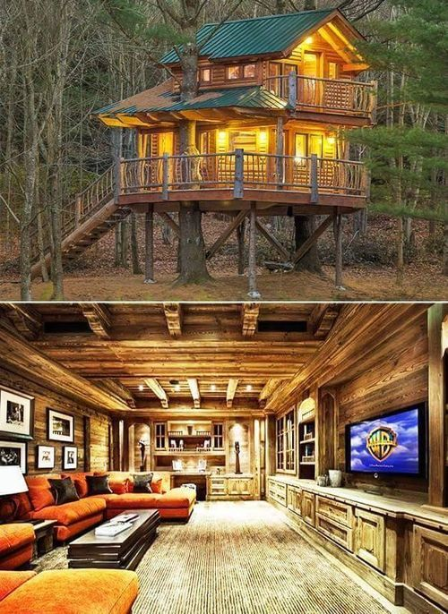 An Image Collection On Imgfave House On Stilts Cool Tree Houses