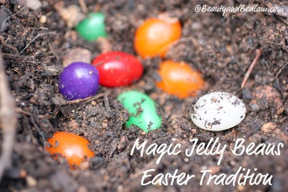 Plant the Magic Jelly Beans and watch them grow overnight. Such a special tradition idea behind this.