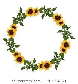 1000 Similar Stock Images Photos Vectors Shutterstock In 2020 Sunflower Illustration Floral Wreaths Illustration Flower Frame