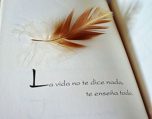 Manual del mesias richard bach