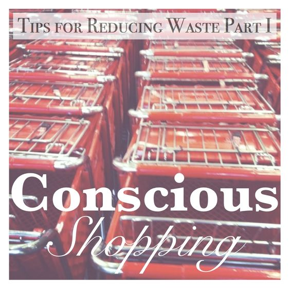Our Front Porch View: Tips for Reducing Your Waste (Part I): Conscious Shopping