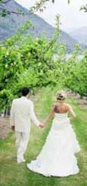 Orchard View Greens Landing Weddings Events Lake Chelan Washington