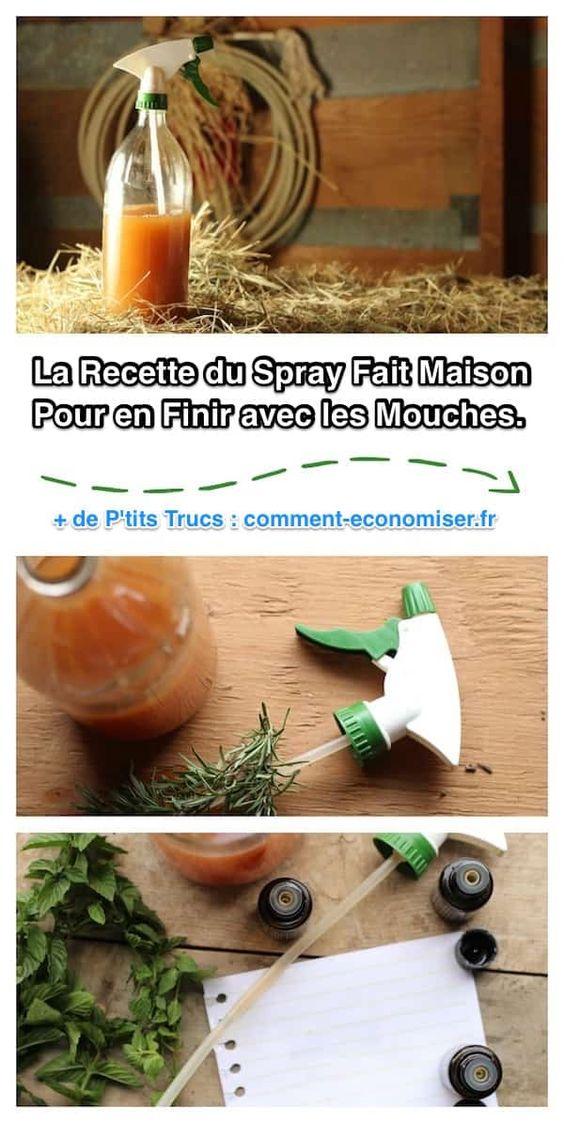 Recette du spray fait maison contre les mouches                                                                                                                                                     Plus