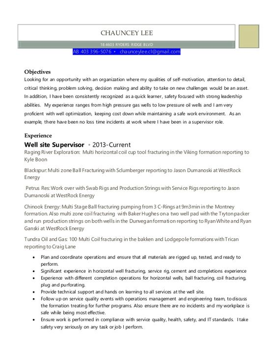 Marketing Resume Skills 2016 Marketing Resume Skills 2016 2016 - marketing objectives resume
