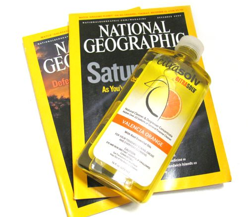 national geographic essay contest