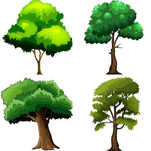 2d Cartoon Trees Trees Cartoon Textures Materials