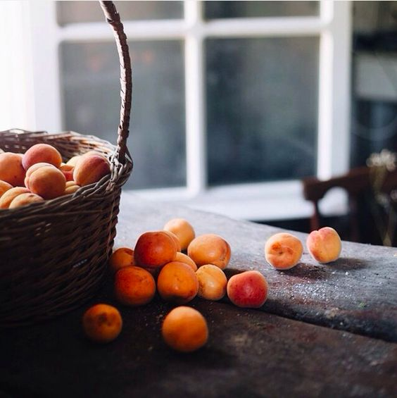 apricots | food photography: