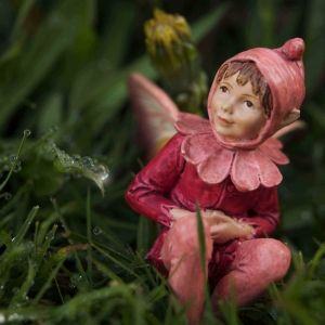 Flower Fairy Photograph for Baby's Nursery