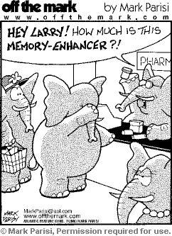 Embarrassed Elephant