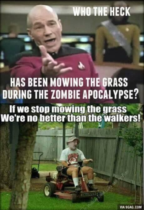 Now The Grass All Day Long Walking Dead Funny The Walking Dead Walking Dead Memes
