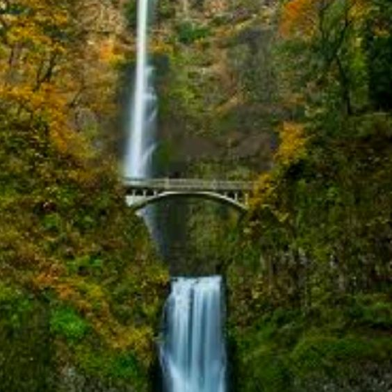 Multnomah Falls In Oregon A Beautiful Place To Visit Oregon Places To See Pinterest