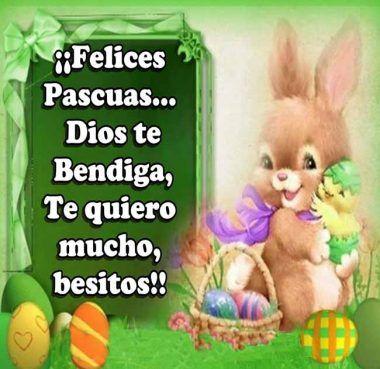 Imagenes Felices Pascuas Saludos Tarjetas Bendiciones conejo