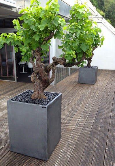 124 best Jardinières sur mesure / Custom planters images on ...