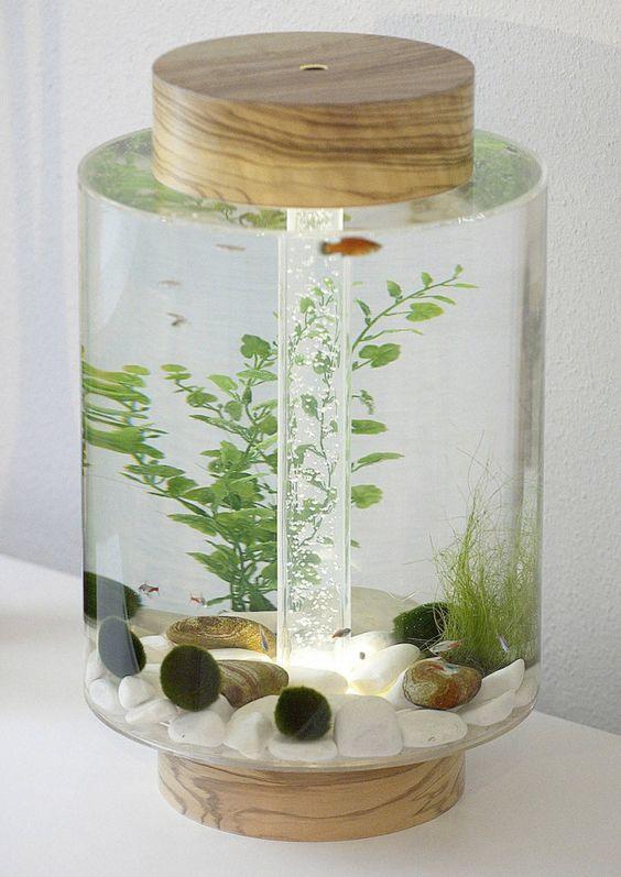 plant aquarium nano aquarium aquarium decor white aquarium aquarium ...