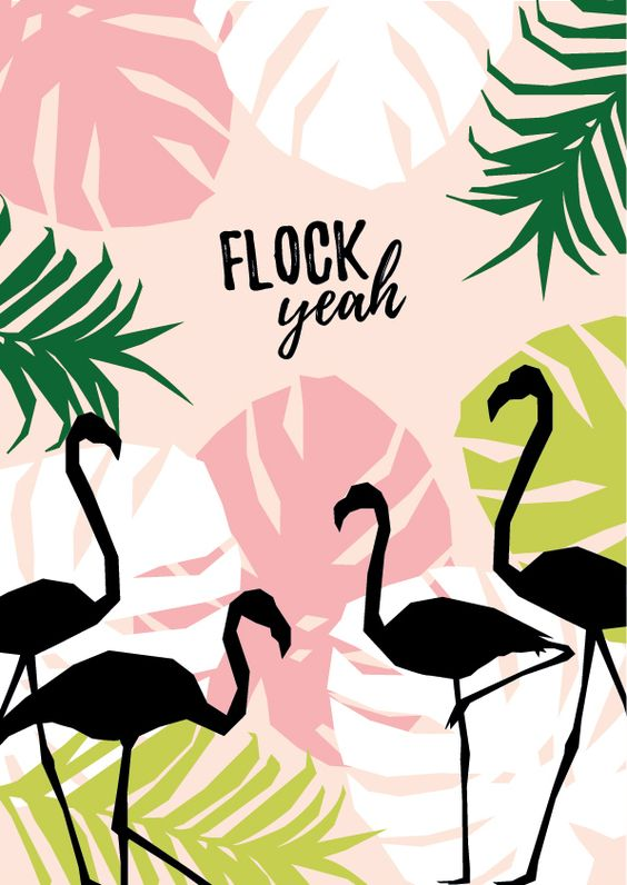 Wallpapers de Flamingos para Celular (+10)