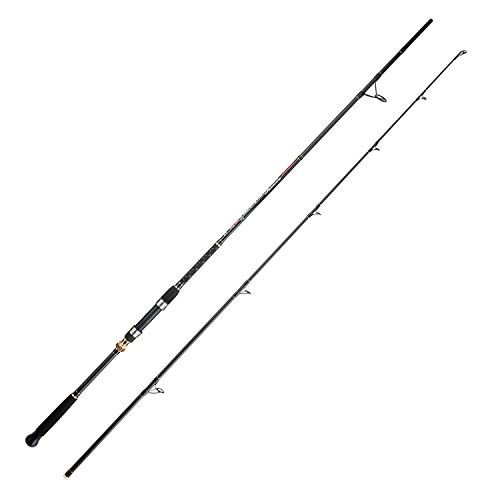 Berrypro Surf Spinning Rod Graphite Surf Fishing Rod 9 10 10 6 11 12 13 3 9 2pc Surf Fishing Rods Surf Fishing Telescopic Fishing Rod