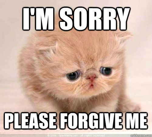 I M Sorry Please Forgive Me And 10 More Purrfect I M Sorry Memes Sorry Memes Im Sorry Meme Sorry Images