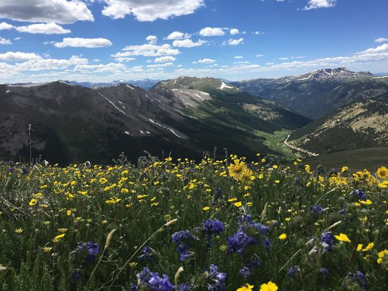 Beautiful Nature/ landscape inspiration you will love. Independence Pass Colorado [OC] [4032 x 3024] http://ift.tt/2go07n2.