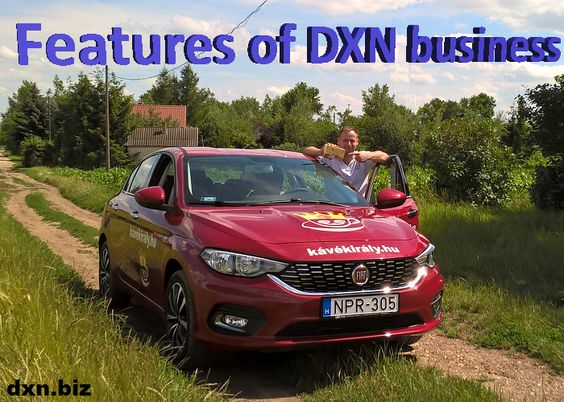 Features of DXN business