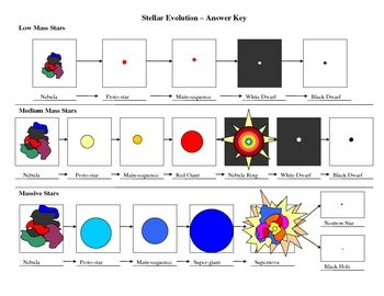 Stellar Evolution Flowchart | Flowchart, Life Cycles and Stars