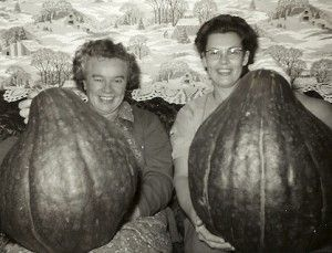 Learn more about the Victory Gardens of Chicago, including more interesting vintage photos. These winter squashes were fertilized with chicken manure. Apparently, it worked! Via @LaManda Joy