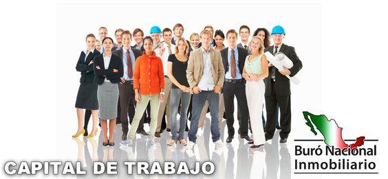 http://buroinmobiliario.com.mx/index.php/servicios/servicios-financieros/item/278-capital