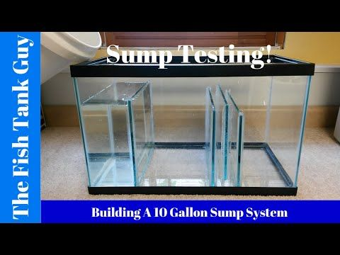 Building A 10 Gallon Aquarium Sump On A Budget Youtube Aquarium Sump Diy Aquarium Filter Aquarium Setup