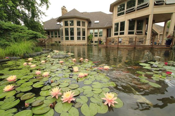 This Chicago suburban home has a man-made, one-acre pond in the backyard. The pond comes right up to the home for optimal viewing out an expanse of windows. By @Aquascape Inc