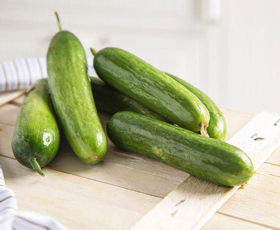 Salatalık Tohumu sipariş etmek için www.intfarming.com/salatalik-tohumu … adresini ziyaret edebilirsiniz. #tarım #ziraat #çiftçi #iyitarim #tohum #günaydintürkiye #Haftasonu #salatalık #salatalıktohumu