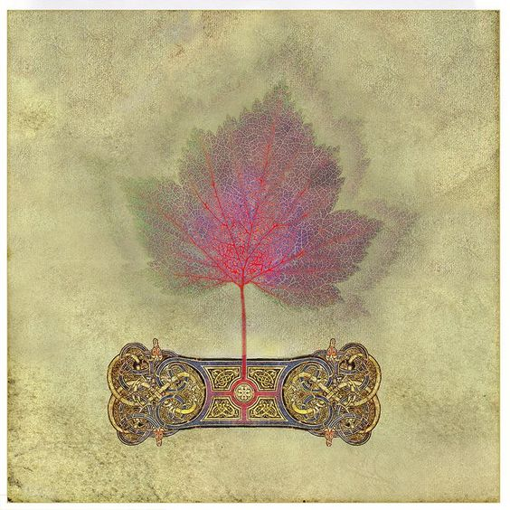 """Even a maple leaf is illuminated for those whose eyes are filled with Love."" ~William Blake (Art: ""Colours are the wounds of Light"" by Michael Green) ..*"