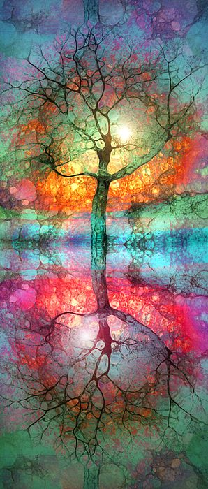 Take The Light This Life Has To Offer Digital Art by Tara Turner