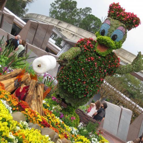 Image result for EPCOT Flower & Garden Festival pinterest
