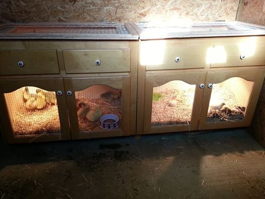 DIY Brooder box... Great re-use!