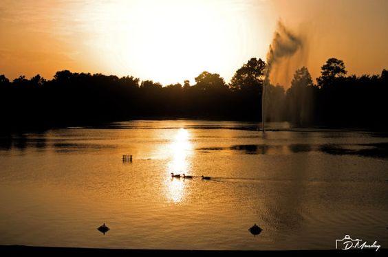 "print for sale ""Calm Day"" by PhotosByDmonday on Etsy. #Sunset #Park #Calm #Houston #Texas #Summer"