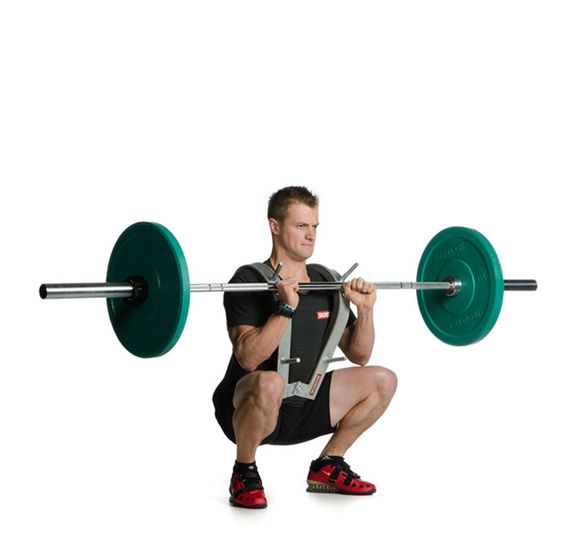 Front Squat Zercher Harness Crypted Molesting Chambers