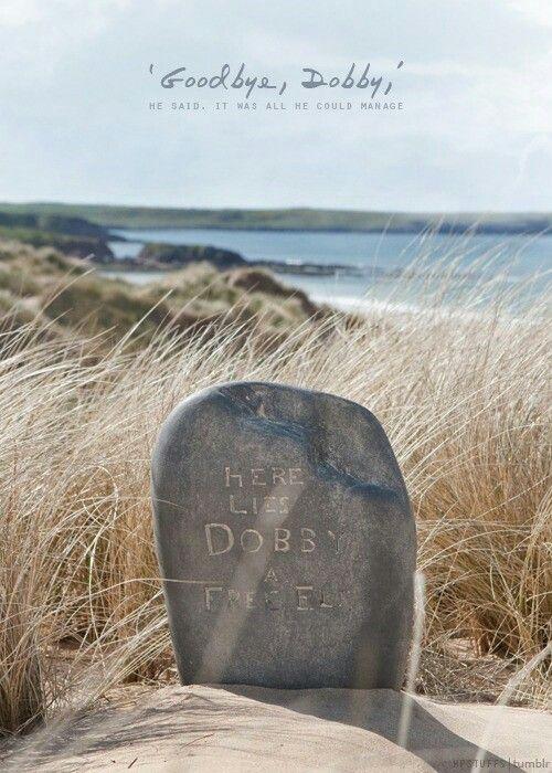 here lies dobby -#main