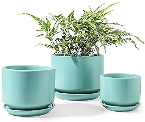 Le Tauci Indoor Planter 4 5 5 6 6 Inch Ceramic Plant Pots With Drainage Hole Round Flower Planter Pot For Pl In 2020 Ceramic Plant Pots Planter Pots Indoor Planters
