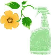 Reinigen mit ätherischen Öle