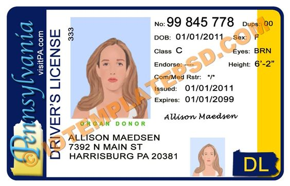 This is Delaware (USA State) Drivers License PSD (Photoshop - id card psd template