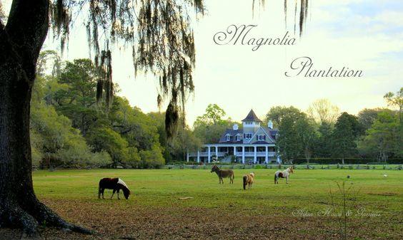 Aiken House & Gardens: Magnolia Plantation & Gardens