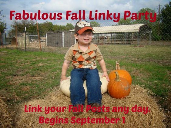 The party begins Sept. 1 at http://mychristmasjourney.blogspot.com/: