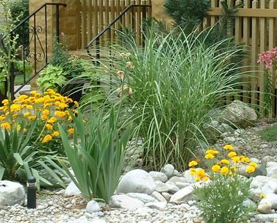 Rock garden tall grasses in rocks mixing large rocks for Large grasses for landscaping