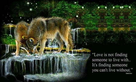 Love Is Not - wolves, abstract, animals, fantasy, trees