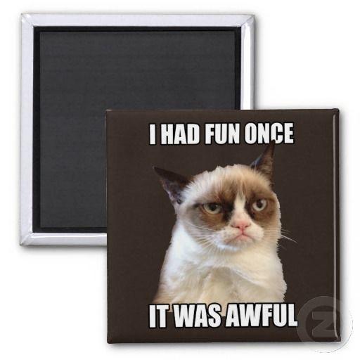 Grumpy Cat - I had fun once Magnets #GrumpyCat #Gifts #Magnets $3.45