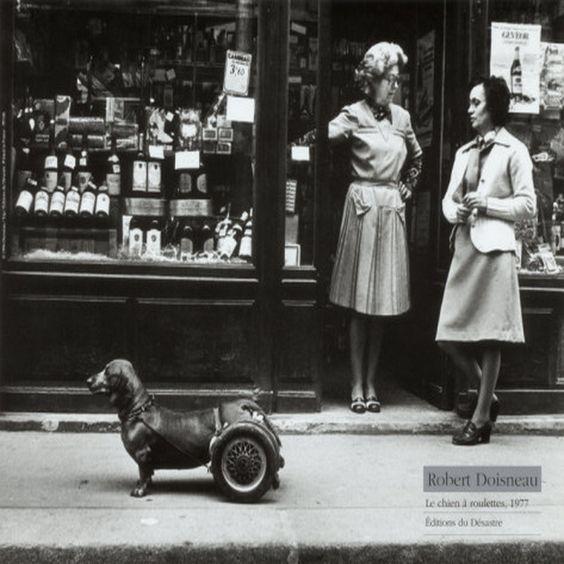 robert doisneau le chien a roulettes c1977.jpg (1600×1600)