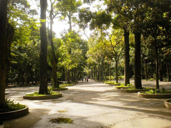 parque-los-caobos_Caracas