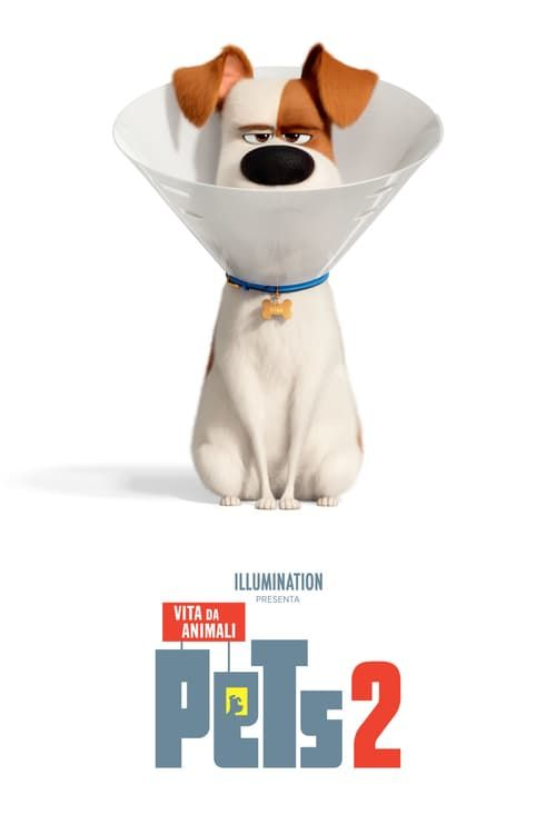 Watch The Secret Life Of Pets 2 Full Movie In Hindi For Free Download Film Film Noir Commedia